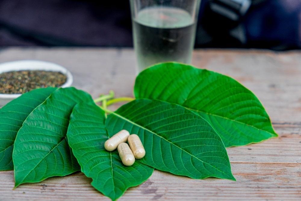 green sumatra dosage