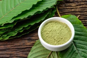 Slo Kratom Vendor Review