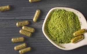 Garden Zen Herbs Vendor Review